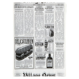 FAT FREE PAPER PRINT NEWSPAPER 250X350MM