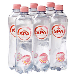 SPA TOUCH OF GRAPEFRUIT 50CL PET