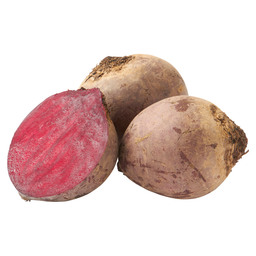 BEET RED HOLLAND