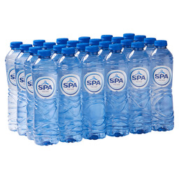 SPA REINE 50CL PET  BLAUW