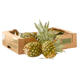 PINEAPPLE FAIRTRADE