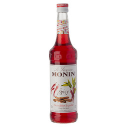 MONIN SPICY