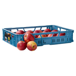 APPLE JONAGOLD LARGE HOLLAND 80-85