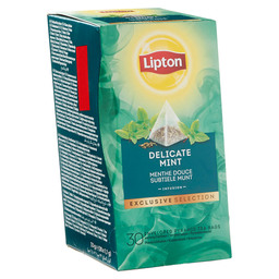 TEE MINZE LIPTON TRENDY TEA