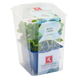 BASIL CRESS SINGLE