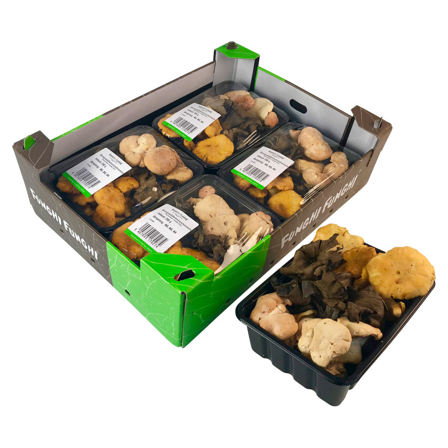 FOREST MUSHROOM MIX PACKED 4 X 250 G