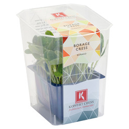 BORAGE CRESS CONTAINER