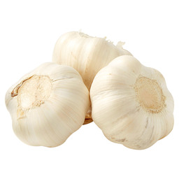 GARLIC STRING WHITE