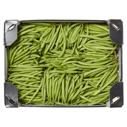 GREEN BEANS/FRENCH BEANS
