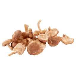 MINI SHIITAKE BIO