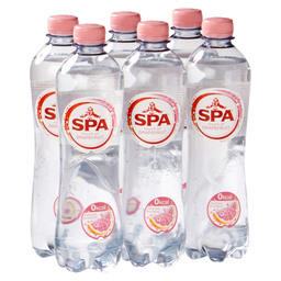SPA TOUCH OF GRAPEFRUIT 50CL